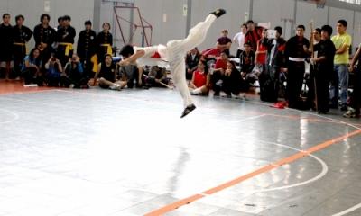 Demostración de kung-fu.