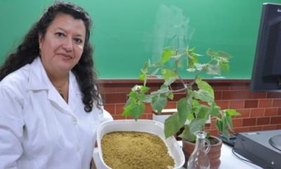 Nancy Chasquibol (Ingeniería Industrial).